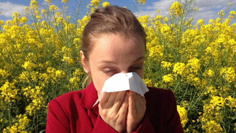 allergy pollen eyes